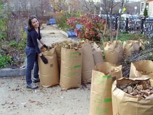 Fall Cleanup at Ramler Park