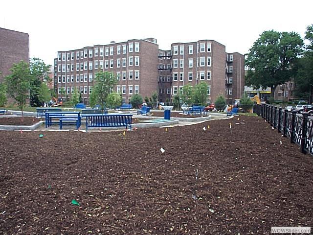 Phase II 2003