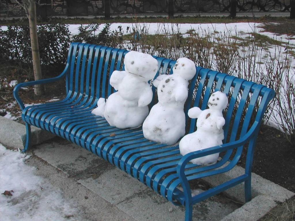 Winter visitors at Ramler Park